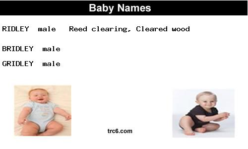 bridley baby names