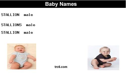 stallions baby names